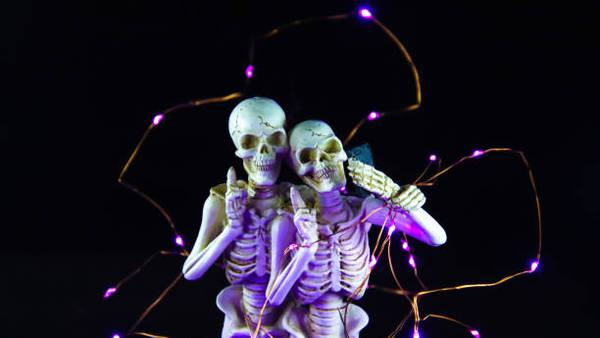 Skeletons Being Naughty - A New Adult Halloween Decoration For Your Yard! (NC-17)
